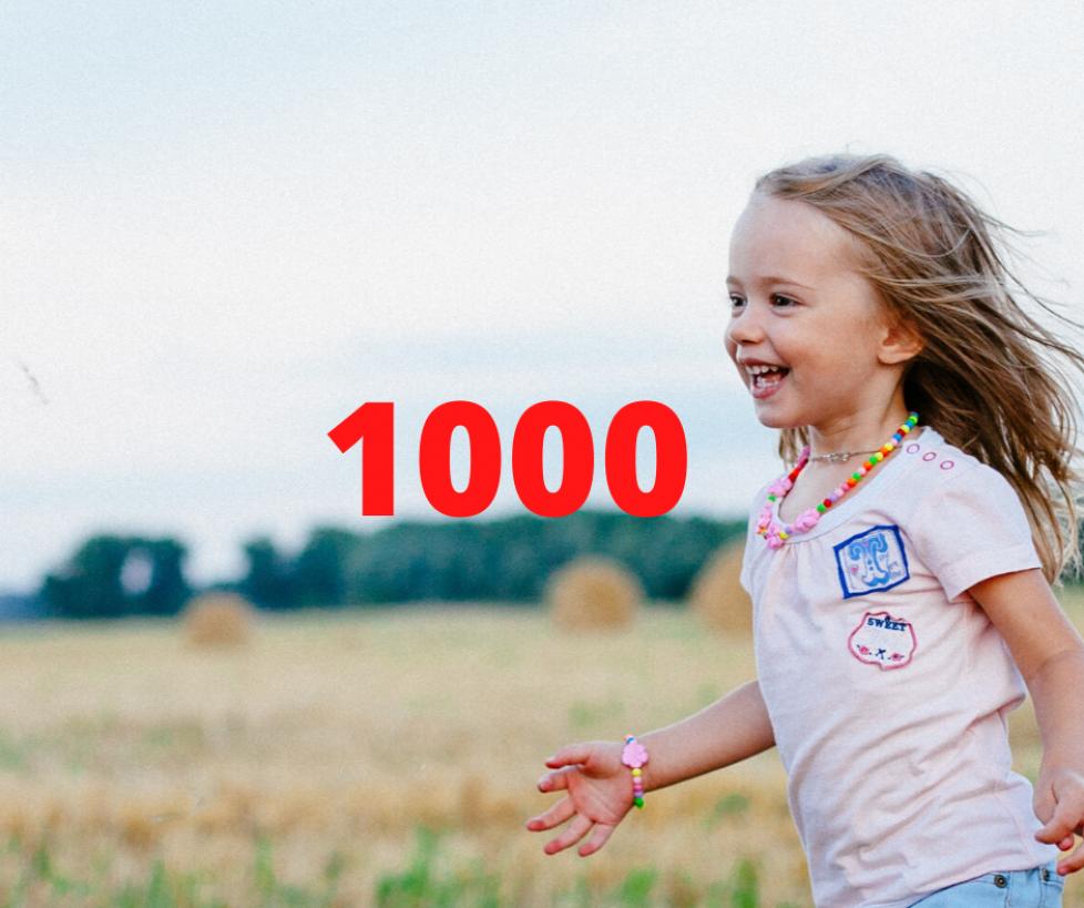 1000 (1)